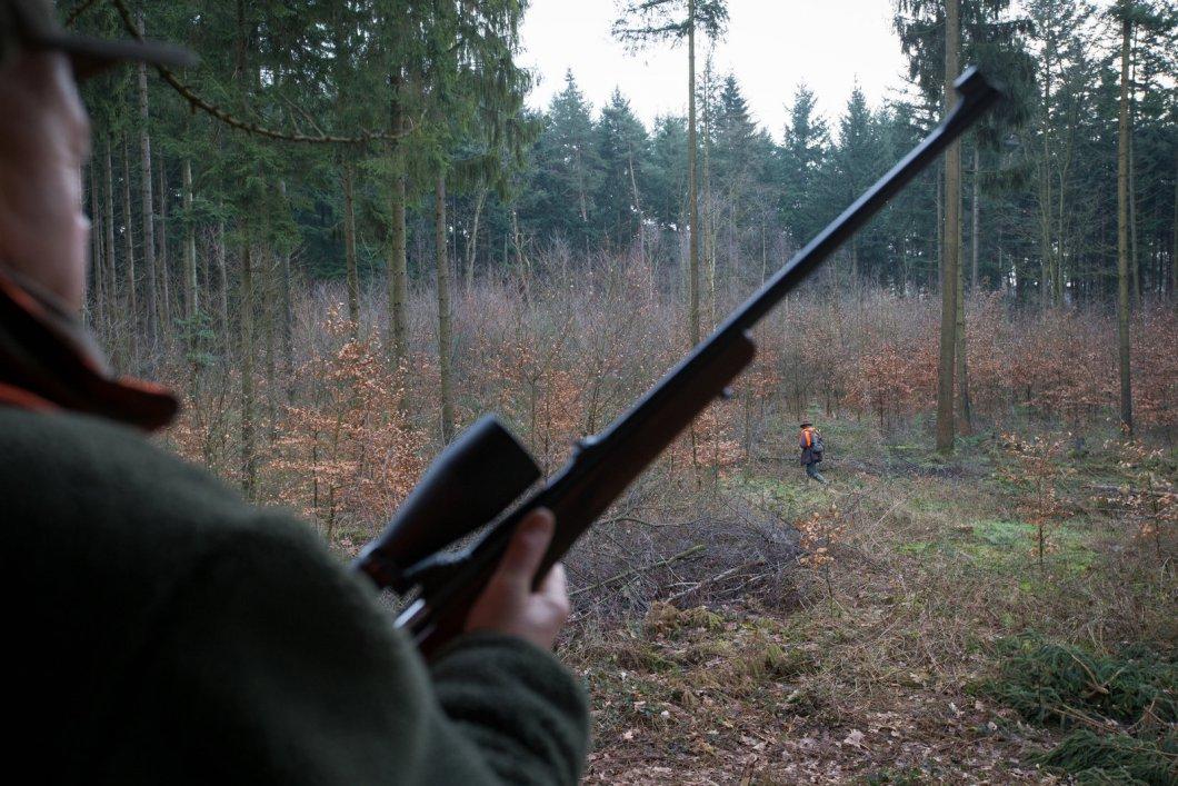 Jäger muss 40.000 Euro bezahlen, weil er Hund erschoss