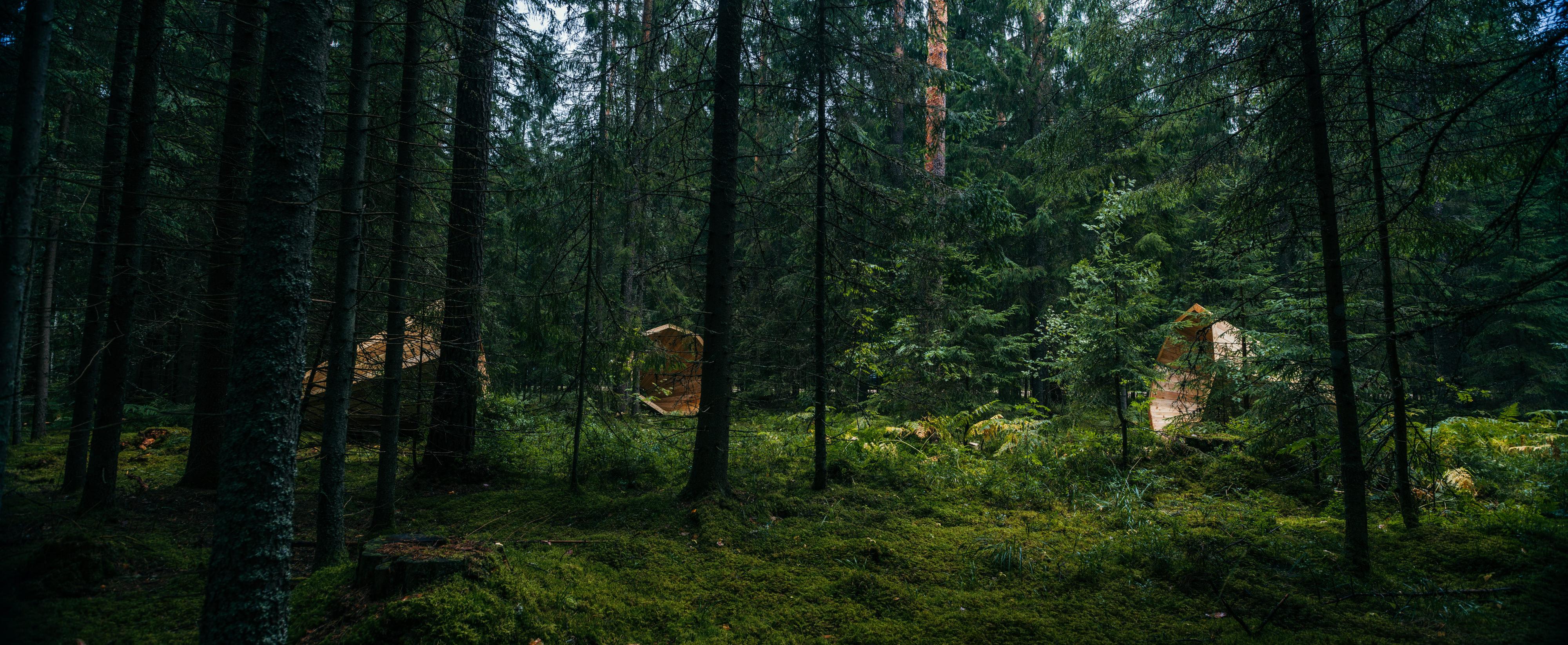 Um die Natur zu hören, bauen sie Megafone aus Holz