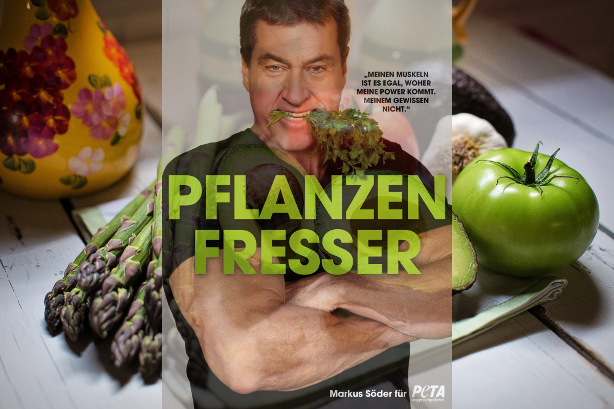 Markus Söder is(s)t vegan